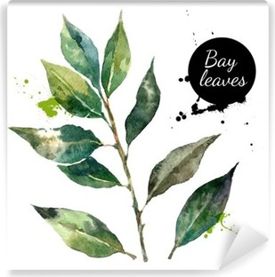 Kitchen herbs and spices banner. Vector illustration. Watercolor Self-Adhesive Wall Mural