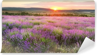 Lavender meadows Self-Adhesive Wall Mural