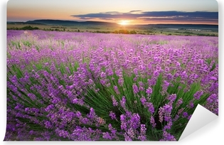 Meadow of lavender Self-Adhesive Wall Mural