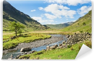 Mountain stream in the Lake District Self-Adhesive Wall Mural