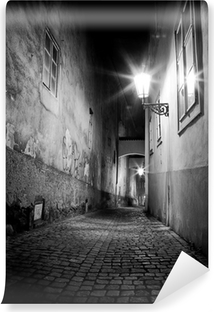 mysterious narrow alley Self-Adhesive Wall Mural