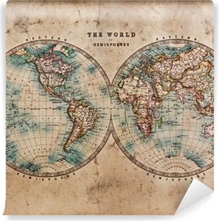 Old World Map in Hemispheres Self-Adhesive Wall Mural