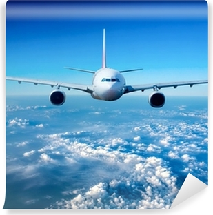 Passenger Airliner in the sky Self-Adhesive Wall Mural