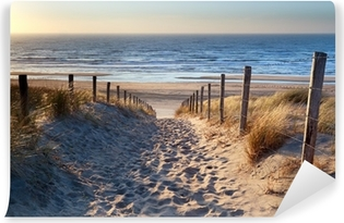 path to North sea beach in gold sunshine Self-Adhesive Wall Mural