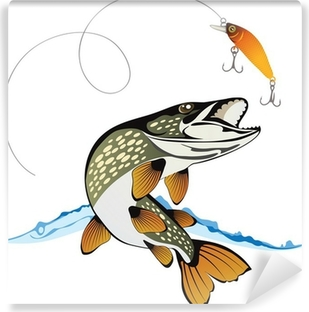 Pike and fishing lure with water splash isolated on a white back Self-Adhesive Wall Mural