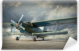 Retro style picture of the biplane. Transportation theme. Self-Adhesive Wall Mural