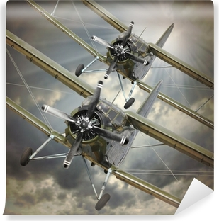 Retro style picture of the biplanes. Transportation theme. Self-Adhesive Wall Mural