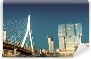 Rotterdam skyline from Erasmus Bridge Self-Adhesive Wall Mural