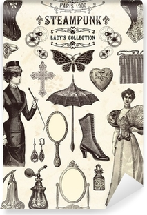 Steampunk lady's collection Self-Adhesive Wall Mural
