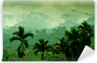 Sumatran mountains Self-Adhesive Wall Mural