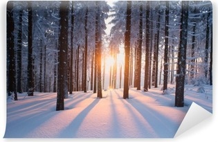Sunset in the woods in winter Self-Adhesive Wall Mural