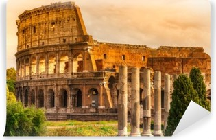 The Majestic Coliseum, Rome, Italy. Self-Adhesive Wall Mural