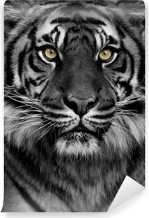 Tiger eyes Self-Adhesive Wall Mural