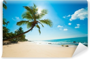 Tropical beach in the sun Self-Adhesive Wall Mural