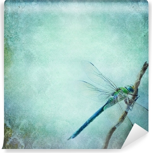 Vintage shabby chic background with dragonfly Self-Adhesive Wall Mural