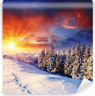 winter Self-Adhesive Wall Mural