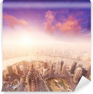 Bybillede af shanghai, tåget og overskyet Selvklæbende fototapet