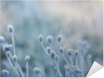 Abstrakt naturlig baggrund fra frosne planter dækket med hoarfrost eller rime Selvklæbende plakat