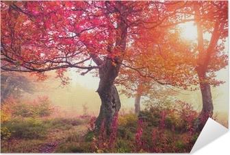 Efterårskov Selvklæbende plakat