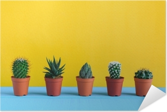Kaktus på skrivebordet med gul wal Selvklæbende plakat