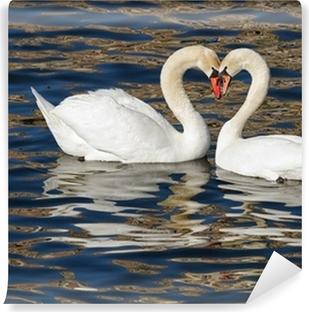 Selvklebende fototapet Romantiske svaner i vår.
