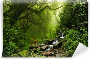 Selvklebende fototapet Selva de Nepal