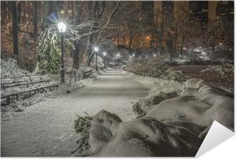 Selvklebende plakat Central Park, New York City