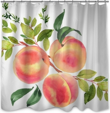 Branch with peaches. Watercolor illustration Shower Curtain