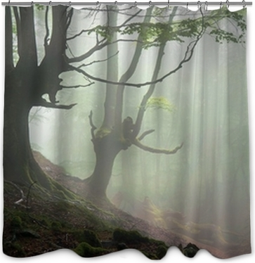 Creepy Forest With Scary Trees Wall Mural O PixersR We Live To Change