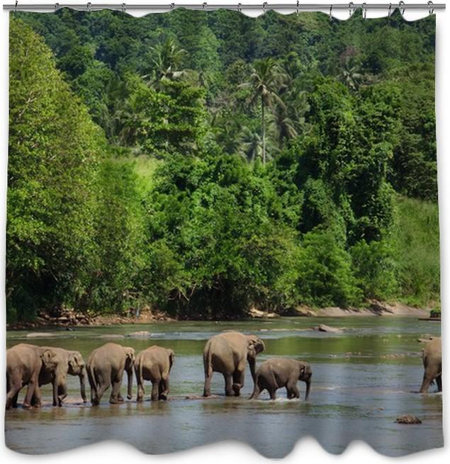 Elephants Family Shower Curtain