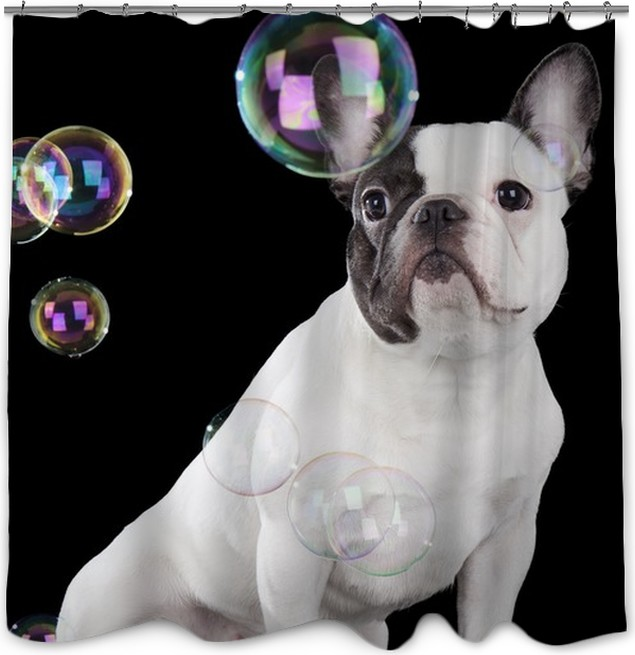 French Bulldog Shower Curtain O PixersR O We Live To Change
