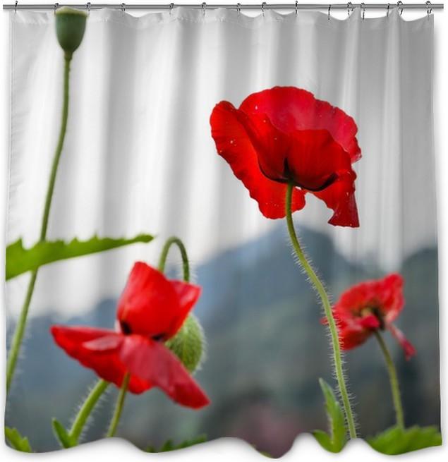 Red opium poppy flower papaver somniferum shower curtain pixers red opium poppy flower papaver somniferum shower curtain mightylinksfo