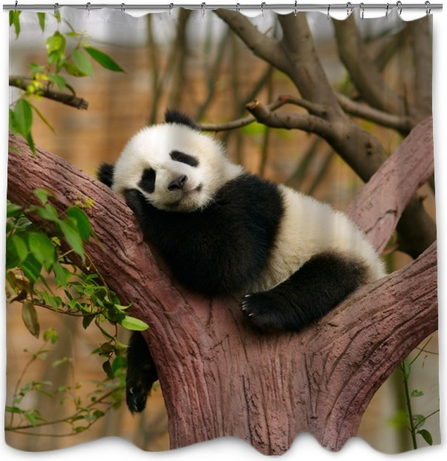 Sleeping Giant Panda Baby Shower Curtain Pixers We Live To Change