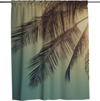 Top of palm tree with sun behind Shower Curtain