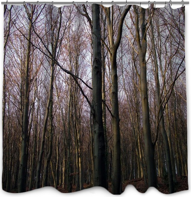 Trees Shower Curtain O PixersR We Live To Change