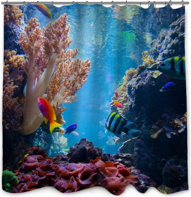 Underwater Scene With Fish Coral Reef Shower Curtain