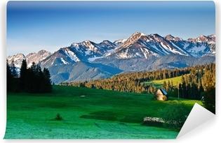 Självhäftande Fototapet Polska Tatrabergen panoram på morgonen