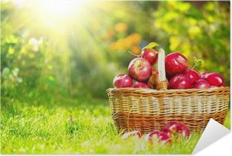 Självhäftande Poster Ekologiska äpplen i en korg utomhus. Orchard. Hösten Trädgård