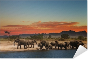 Självhäftande Poster Flock elefanter i afrikanska savannen