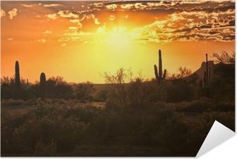 Självhäftande Poster Vacker solnedgång utsikt över Arizona öknen med kaktusar