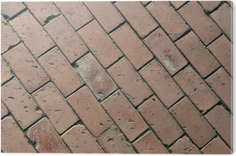 Poster percorso piastrelle di cemento u2022 pixers® viviamo per il
