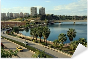 A view of Adana, Turkey Pixerstick Sticker