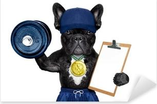 active sport dog Pixerstick Sticker