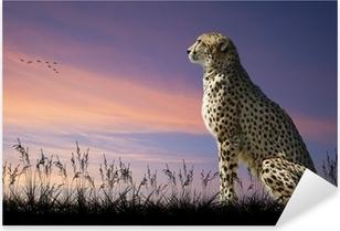 African safari concept image of cheetah looking out over savannn Pixerstick Sticker