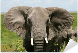 Pixerstick Sticker Afrikaanse olifant amboseli kenia