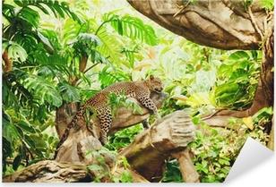 Sticker Pixerstick Allongé (sommeil) Leopard sur une branche d'arbre