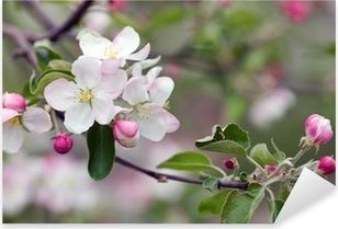 apple blossom Pixerstick Sticker