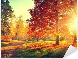 Sticker Pixerstick Arbres baignés dans la lumière du soleil d'automne