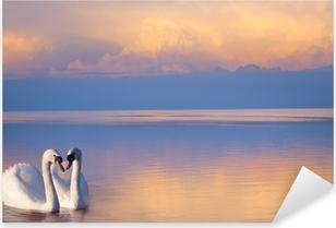 Sticker Pixerstick Art beau Deux cygnes blancs sur un lac