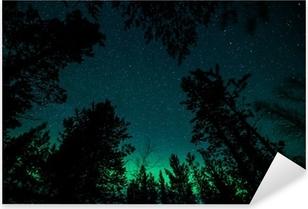Sticker Pixerstick Aurores boréales au-dessus des arbres en Norvège
